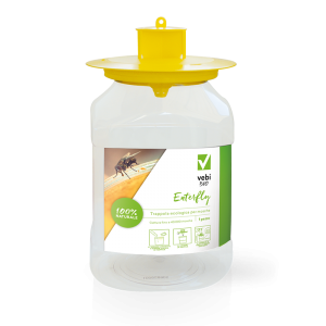 Enterfly Trappola cattura mosche